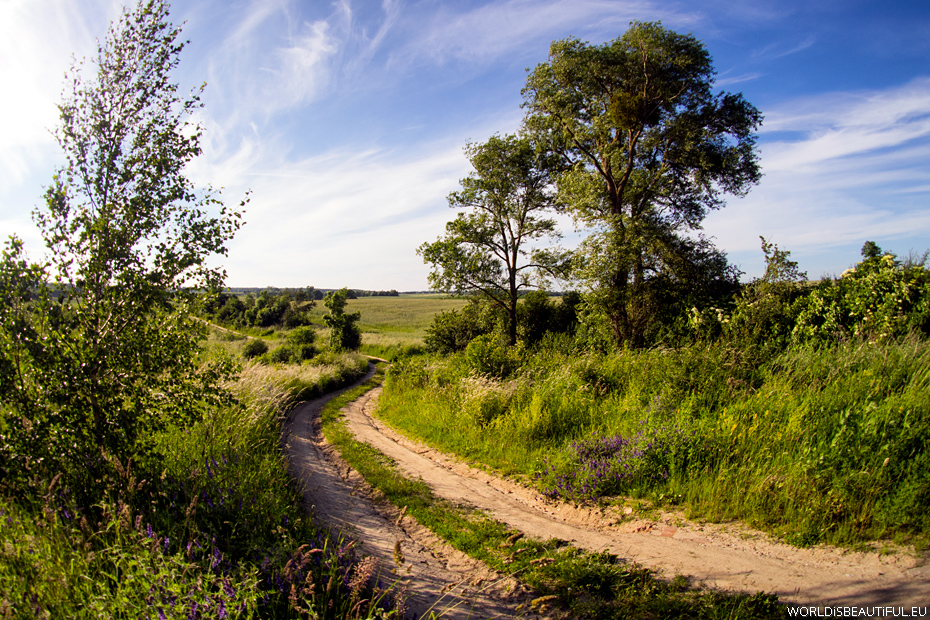 Droga przez pola