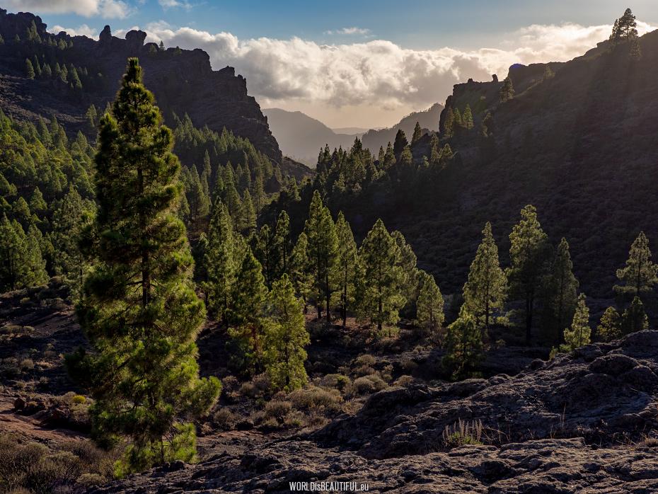Górskie widoki na Gran Canarii