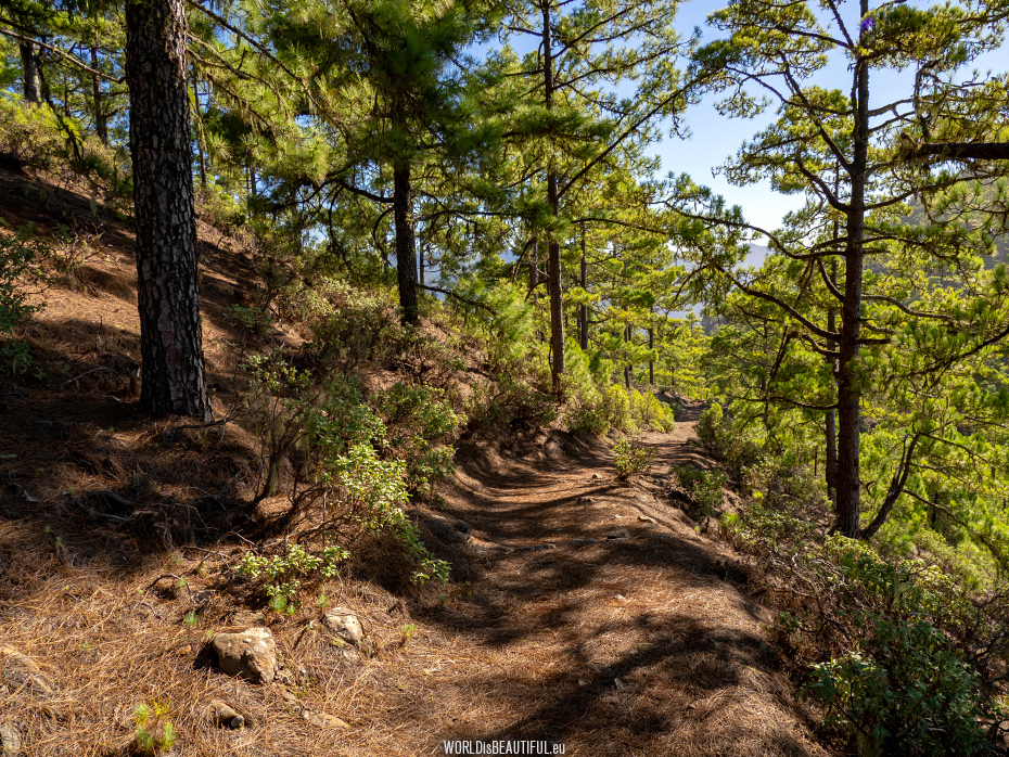 Mountain hiking trail to Altavista