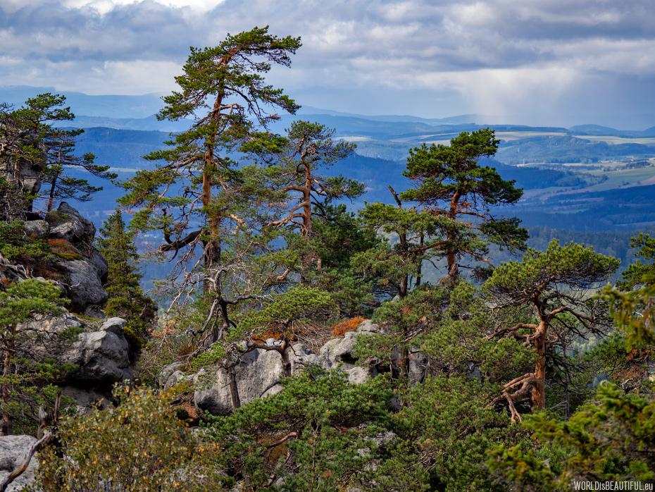 Widoki w Górach Stołowych