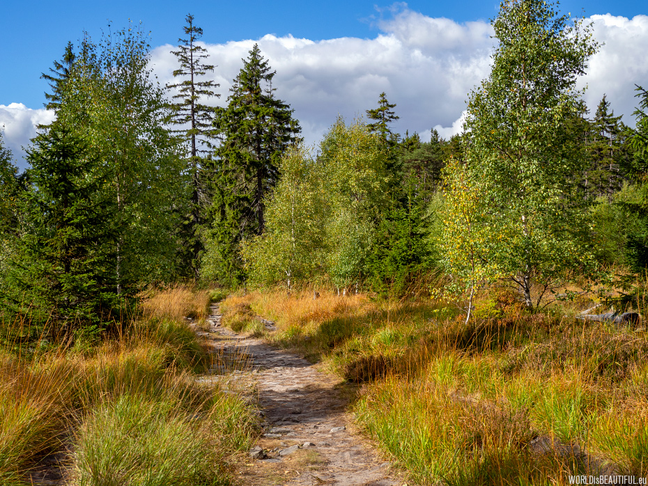 The most beautiful trails in Stołowe Mountains