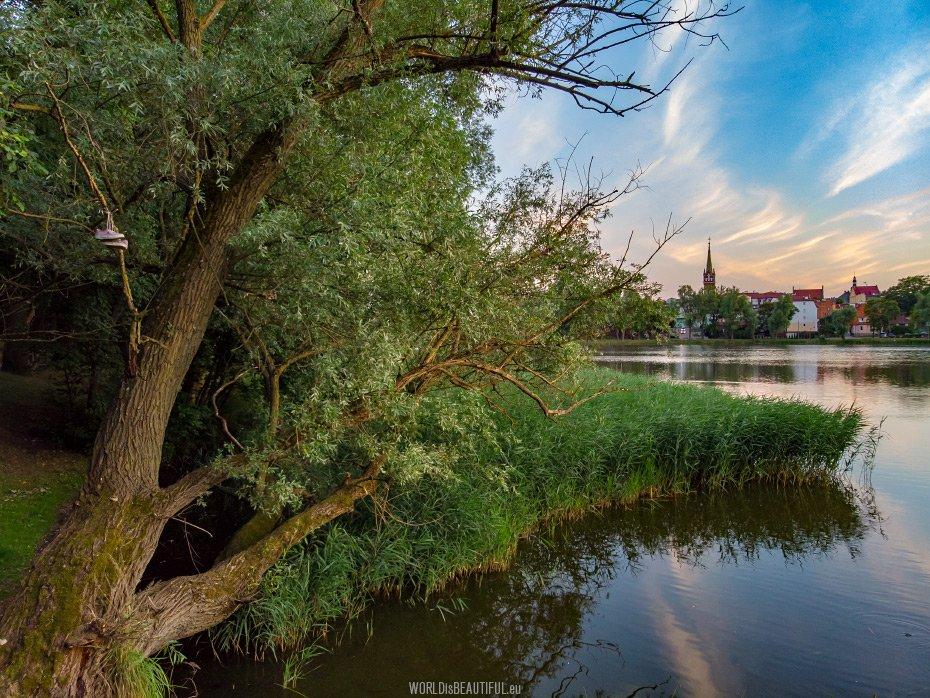Summer in Kętrzyn