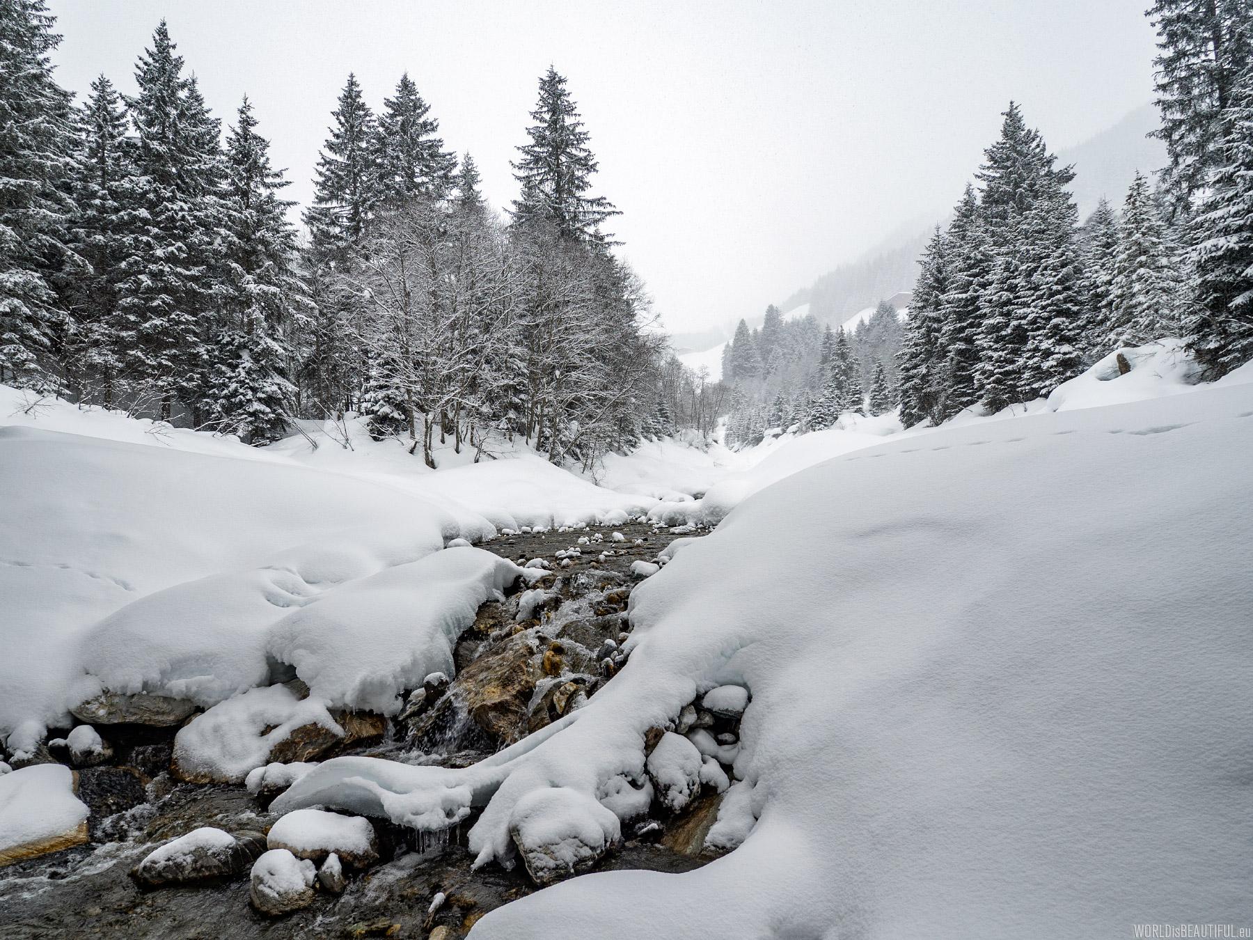Alpine stream