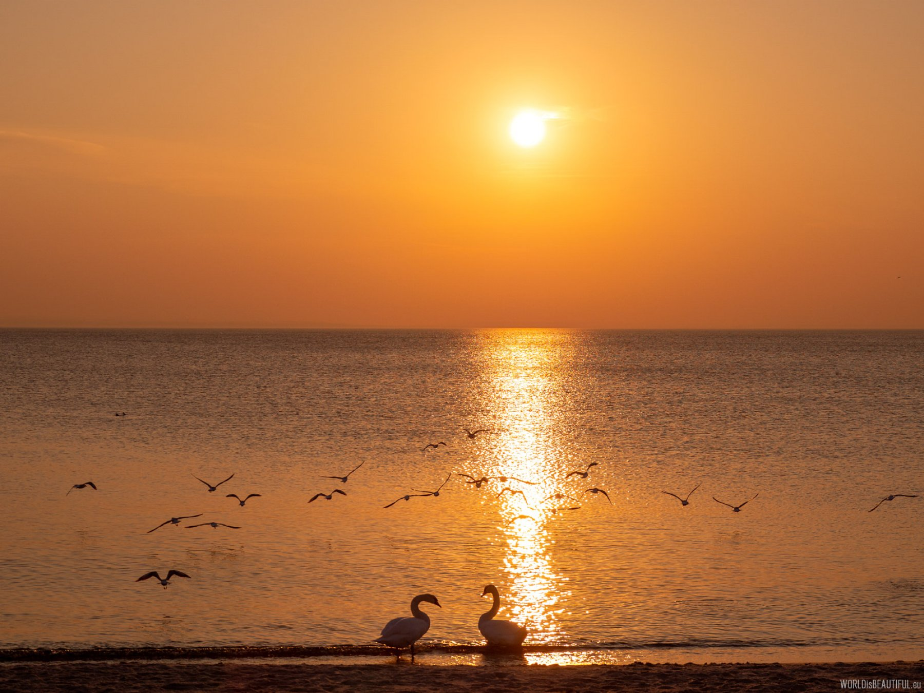 Walk along the sea at sunset