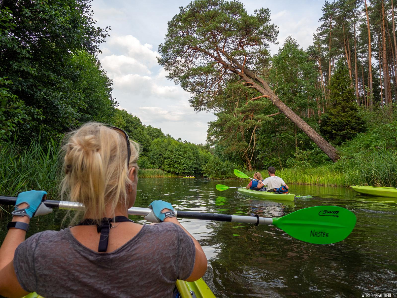Canoeing trip through Bory Tucholskie