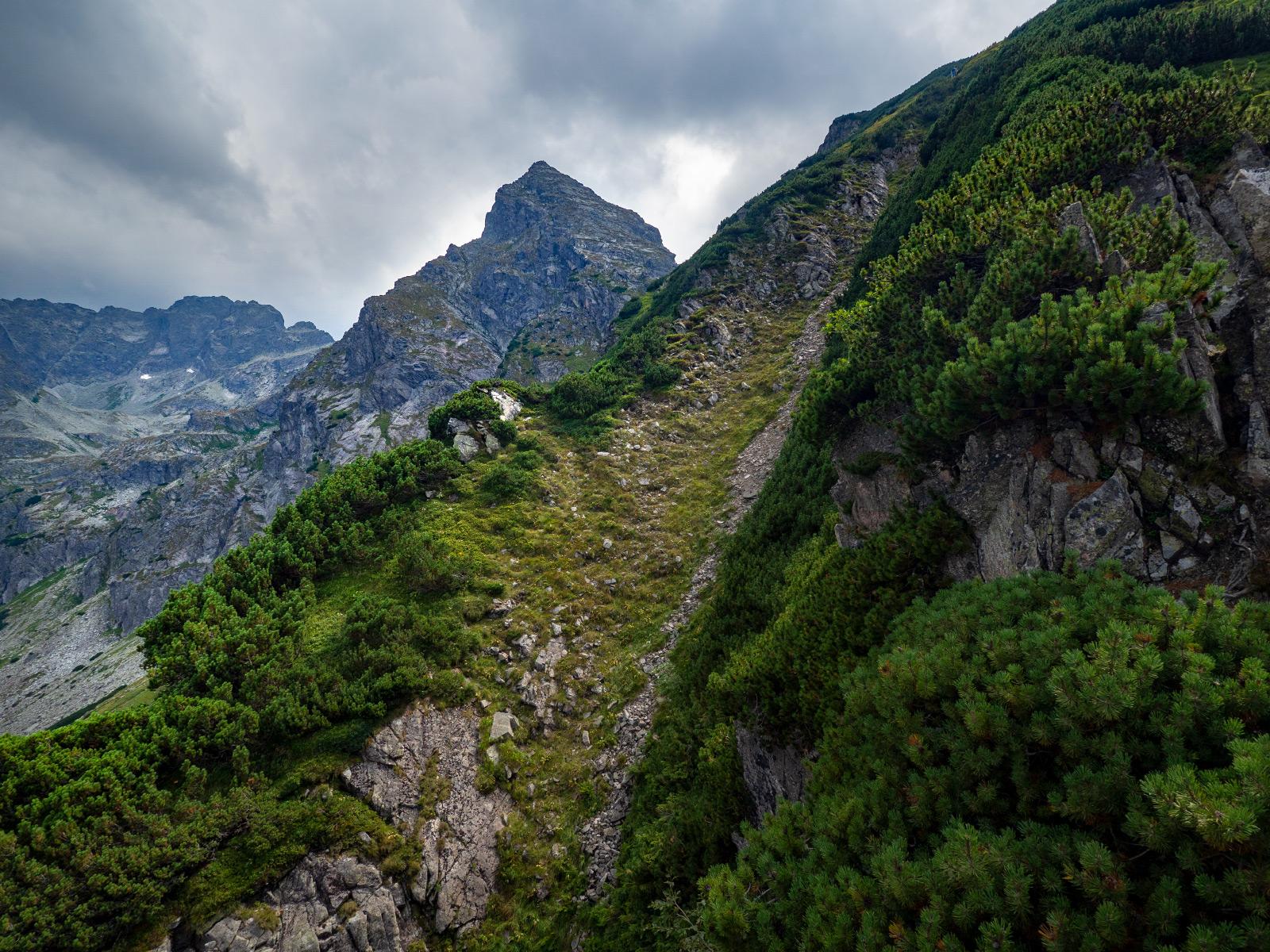 Nature in the Tatra Mountains, Mały Kościelec