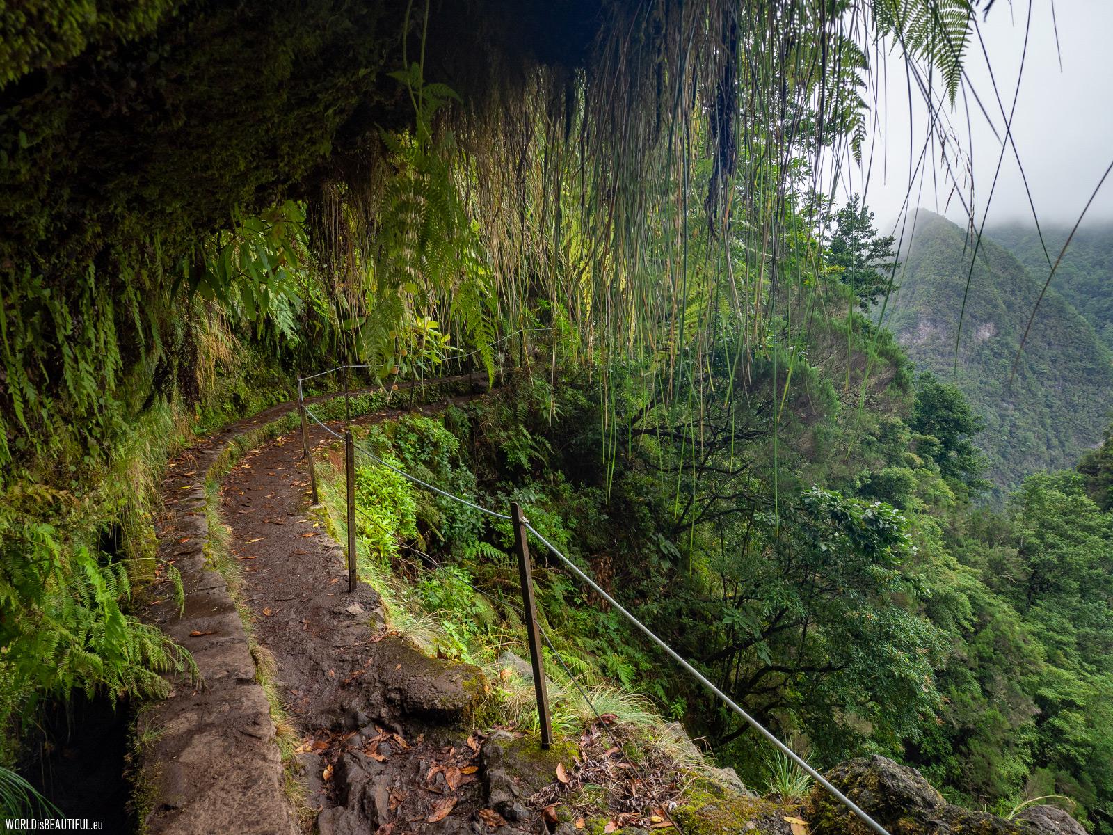 Path along the levada