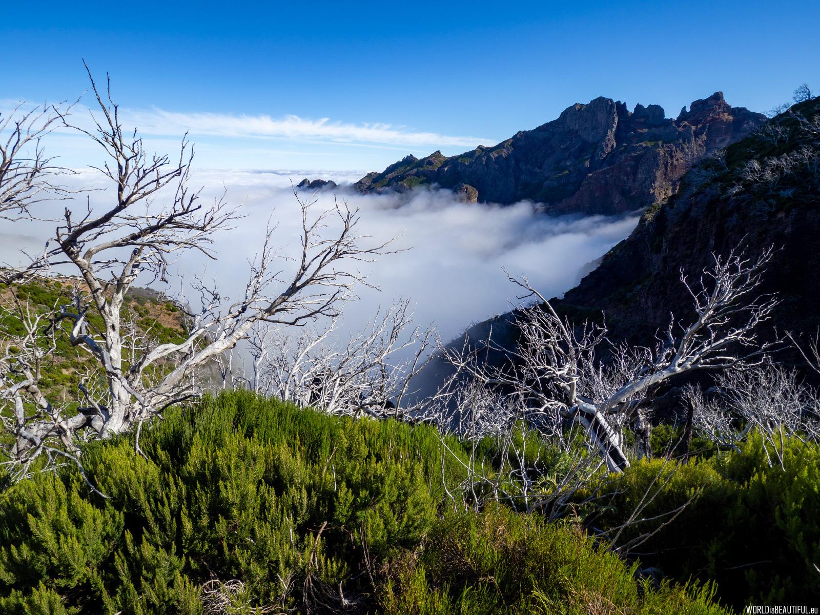 Powrót na Pico do Arieiro