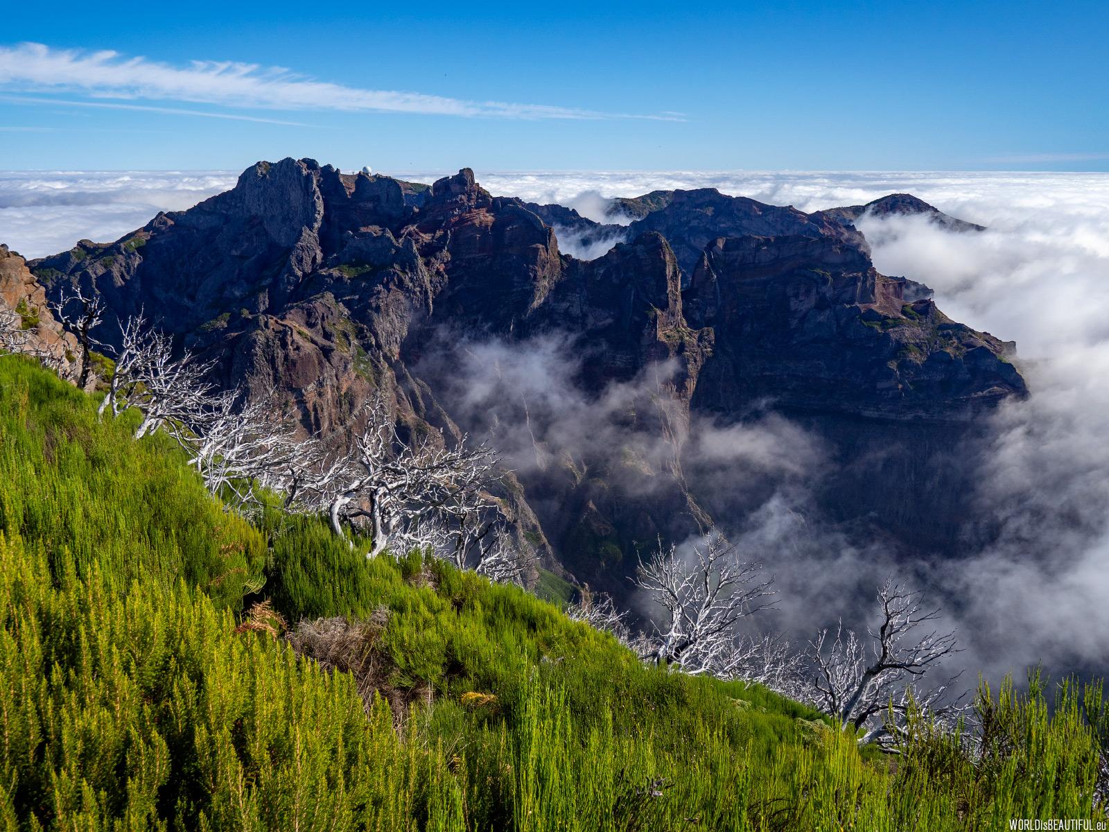 Widok z Pico Ruivo