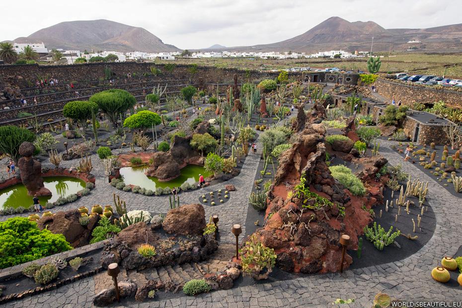 Jardin de Cactus, Guatiza