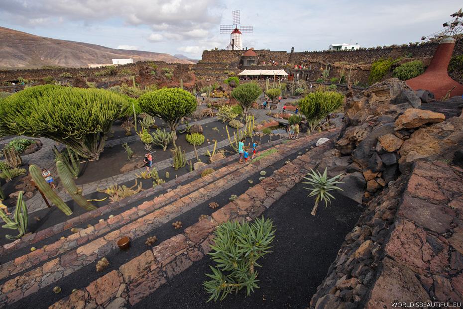 Ogród kaktusów, Lanzarote