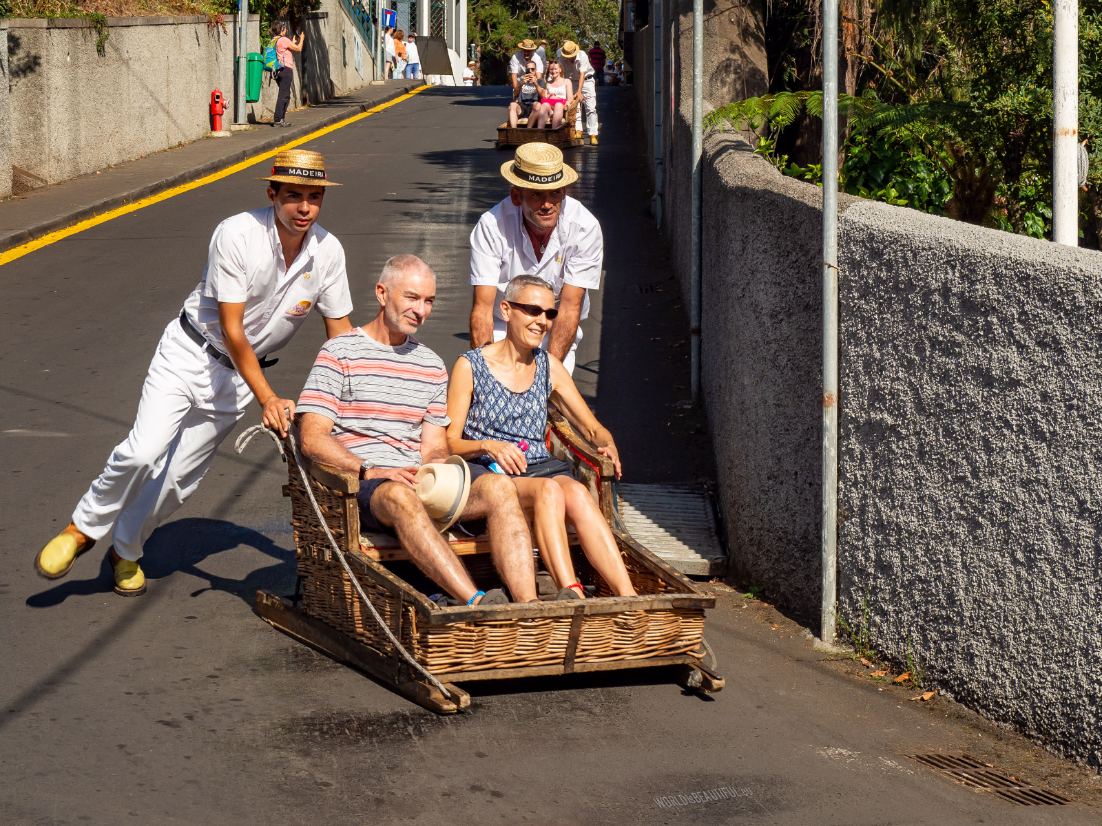 Tobogganing in Funchal