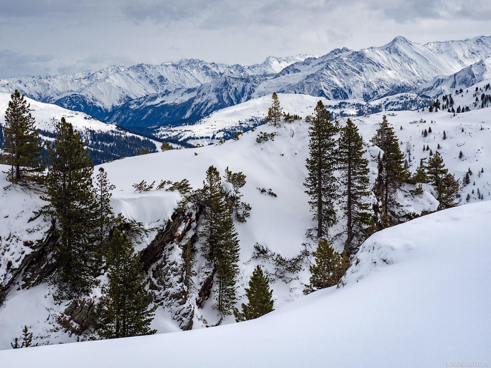 Winter Alpine views