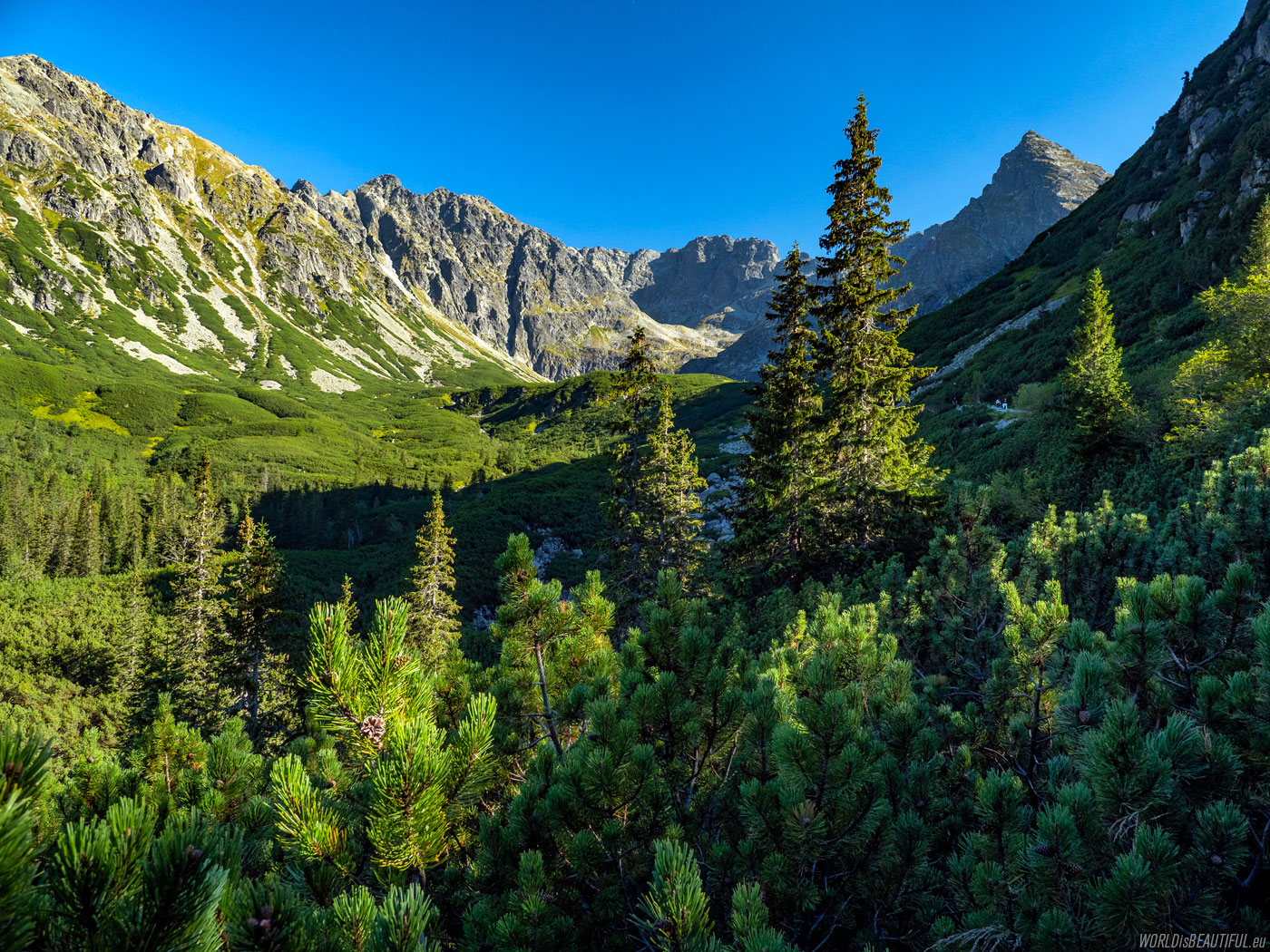 Postcard from the Tatra Mountains