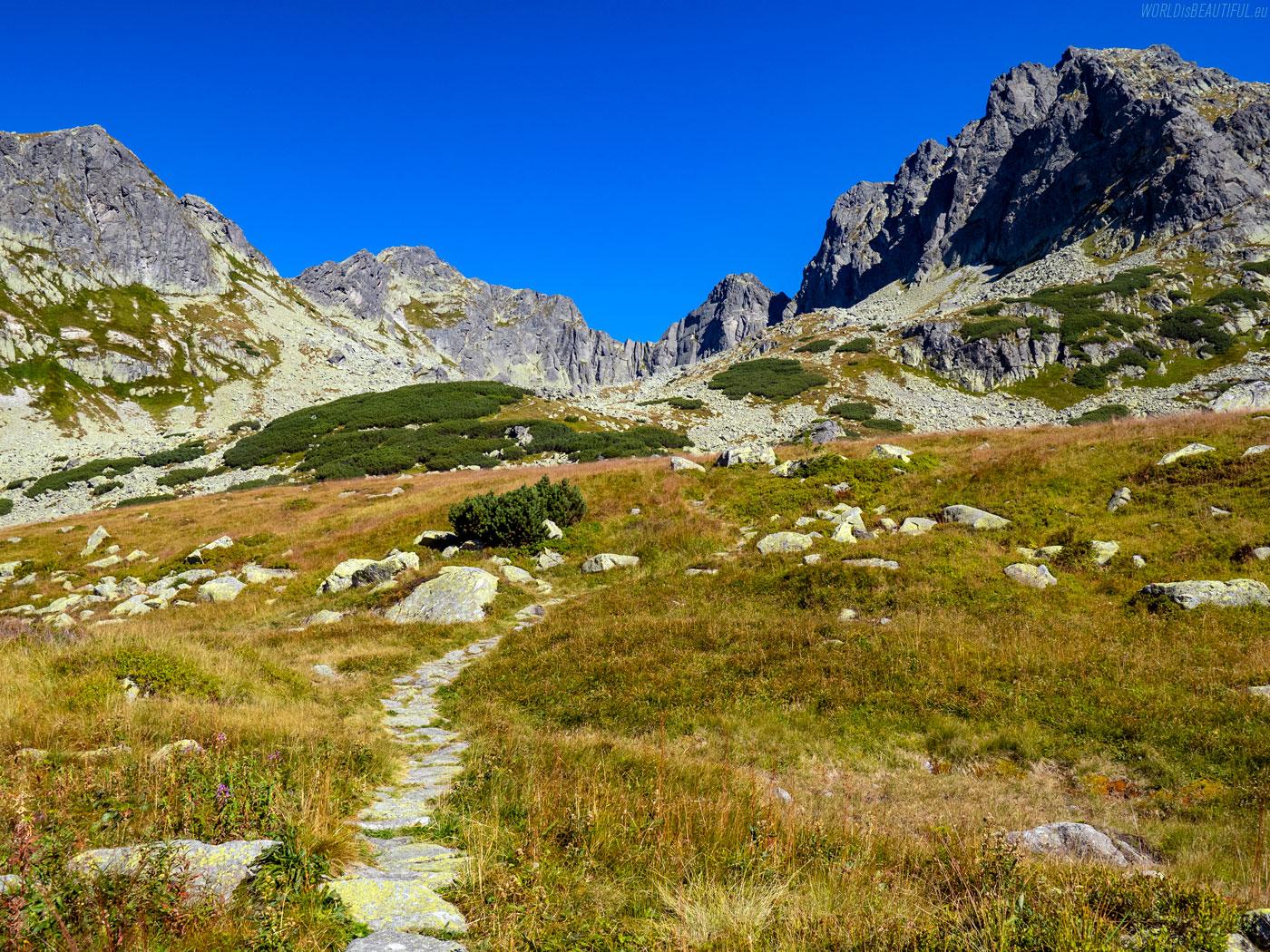 The trail to Kozia Przełęcz