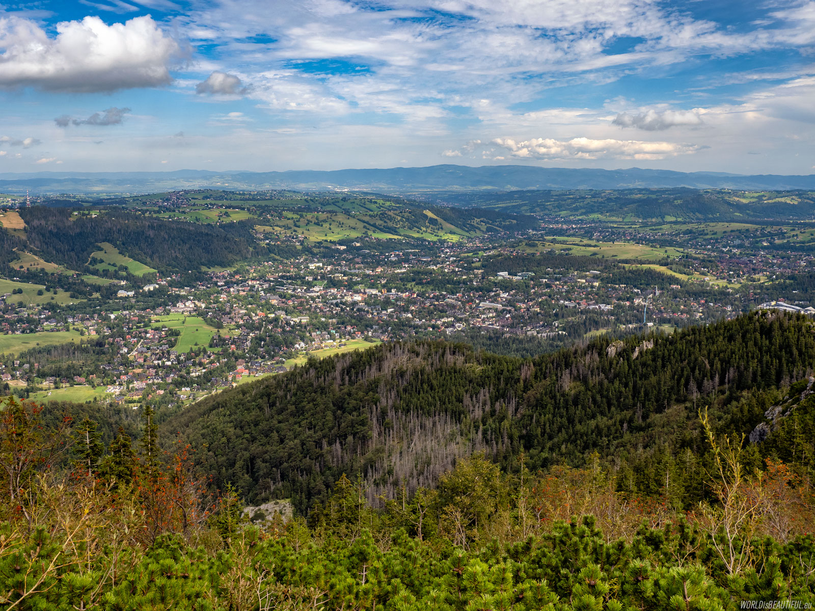 View of Zakopane from Sarnia Skala