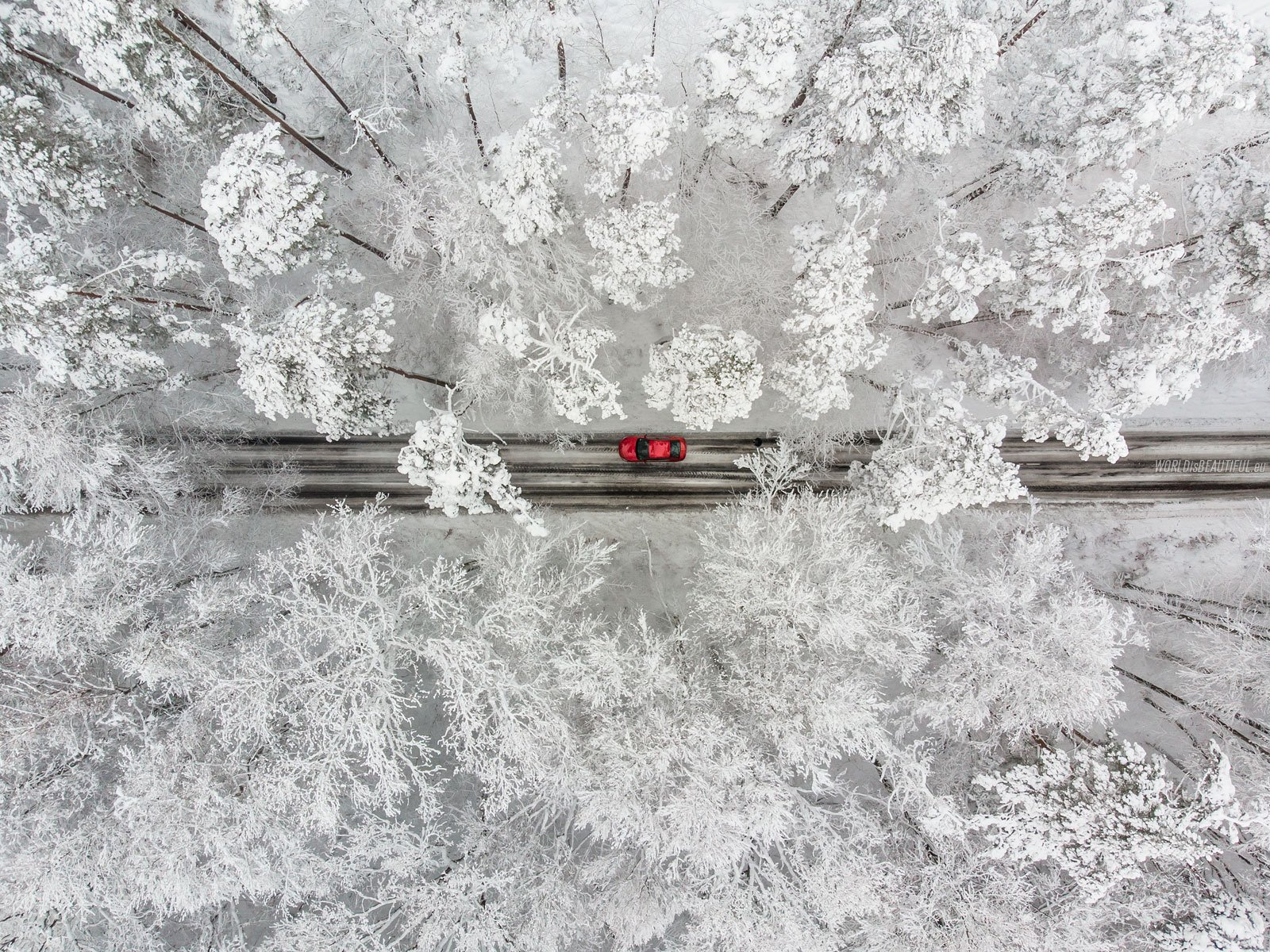 Klasyczny zimowy Top-Down