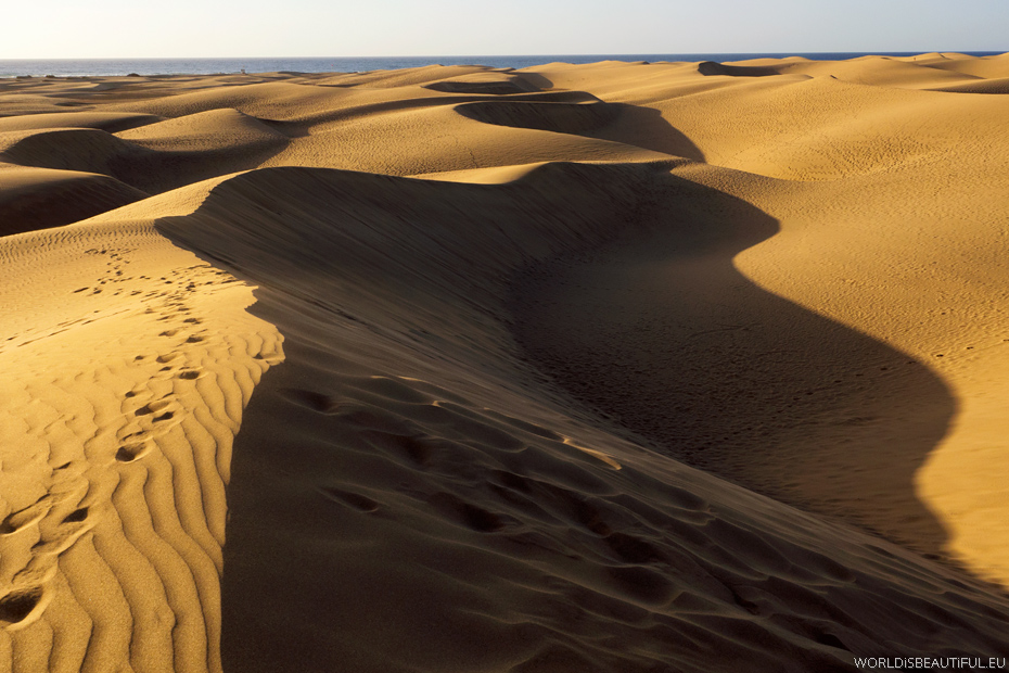 Dunes of the Canary Islands