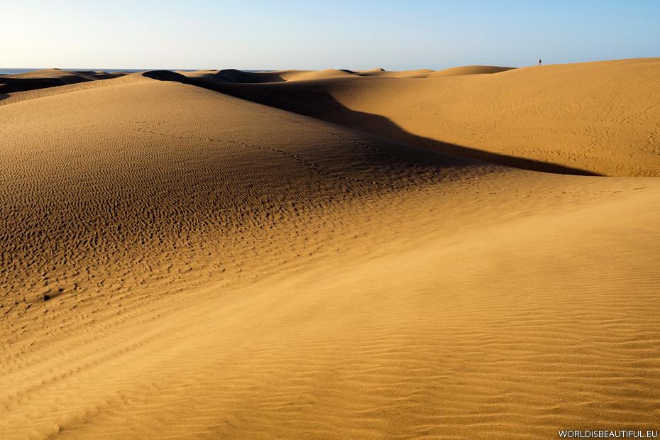 Walk at sunrise on the sand dunes