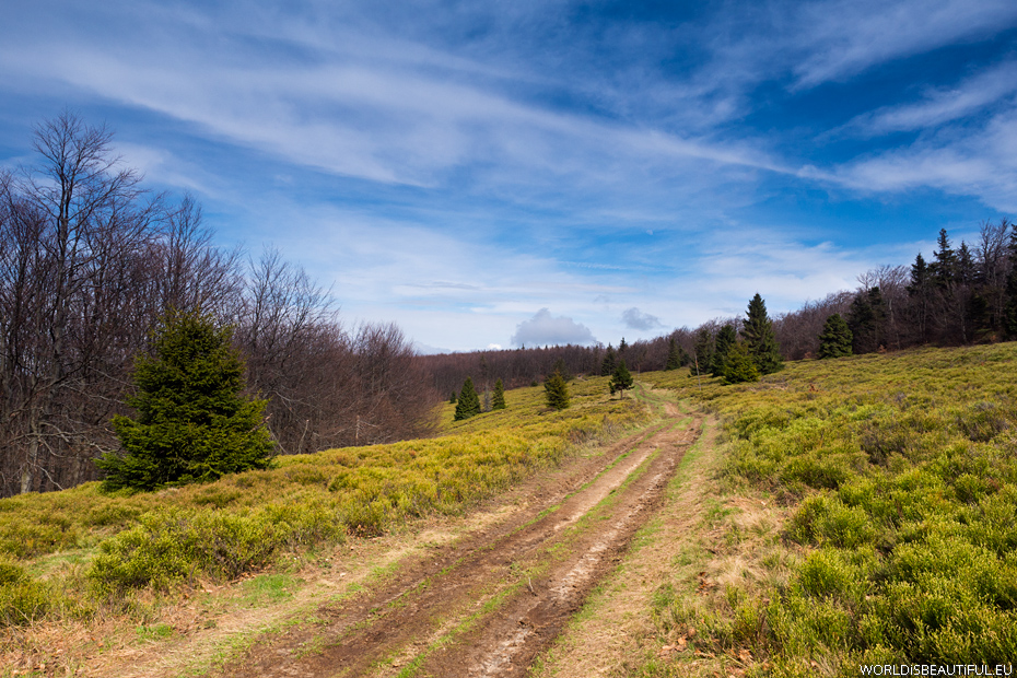 Trails in Beskid Sadecki