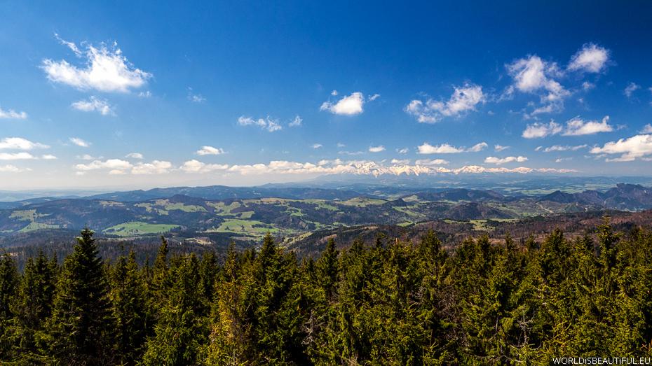 Panorama gór z Radziejowej