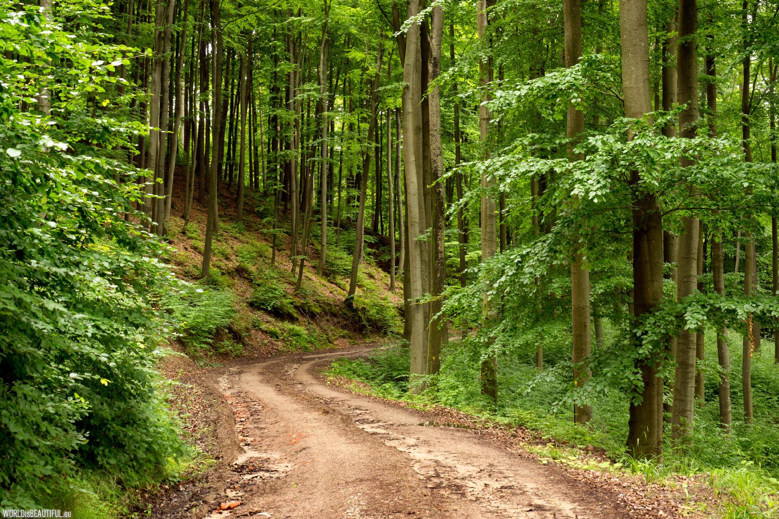 Kashubian Trail