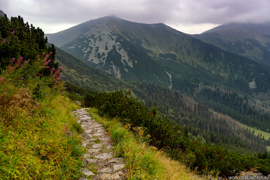 Trail in the mountains to Ciemniak Mountain, Western Tatras