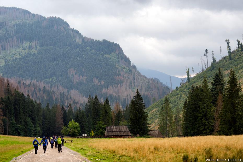 Dolina Kościeliska, Tatry Zachodnie