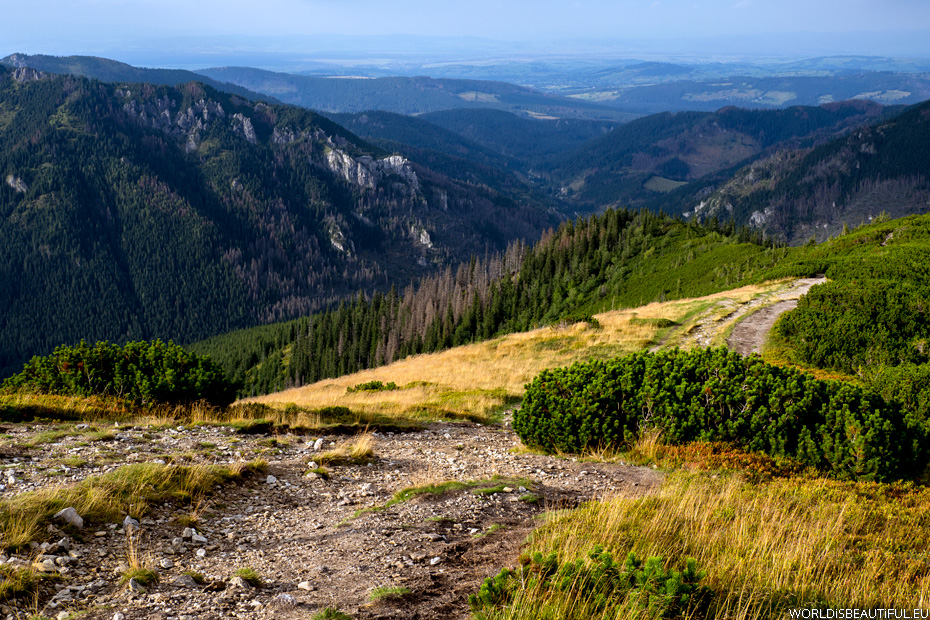 Chocholowska Valley, photo of the Tatras Mountains