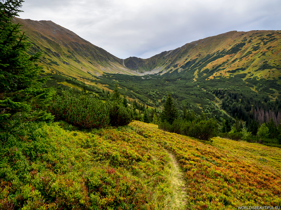 Valley, the Western Tatras landscapes