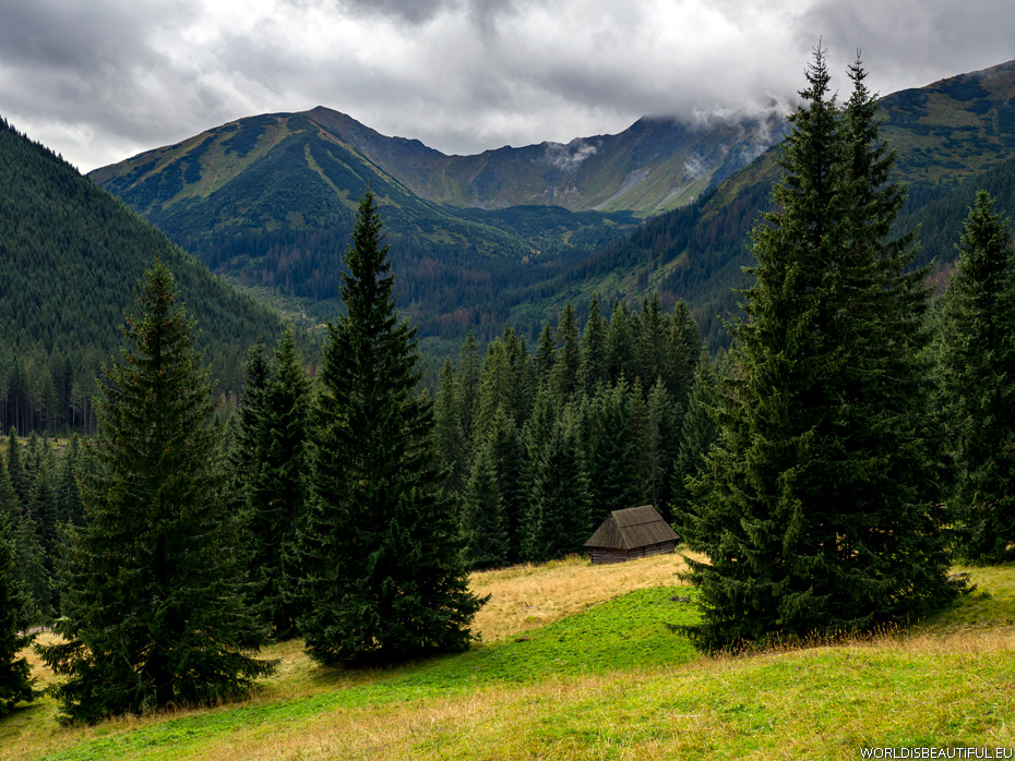 Chocholowska Valley, Tatra Mountains in Poland