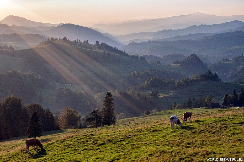Sunset in Mountains, Pieniny