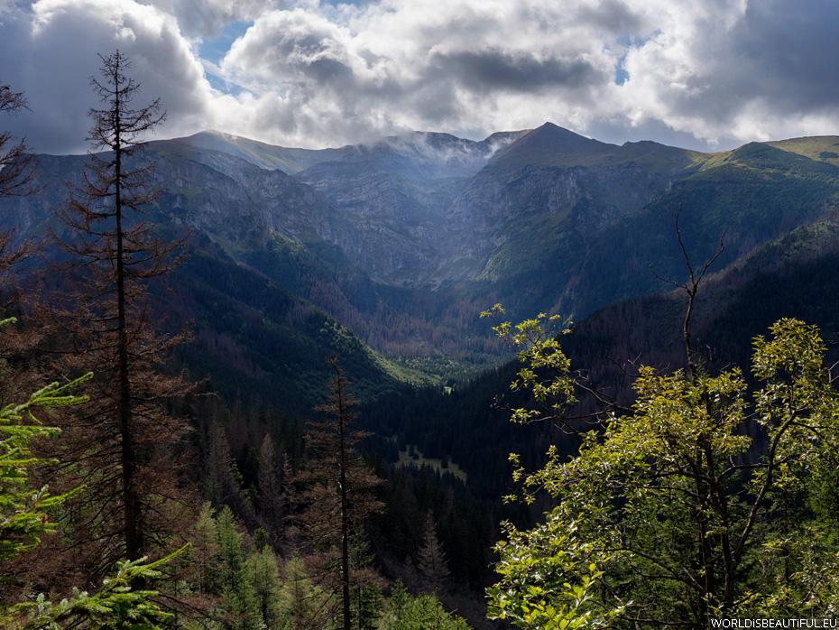 Dolina Mułowa i Czerwone Wierchy