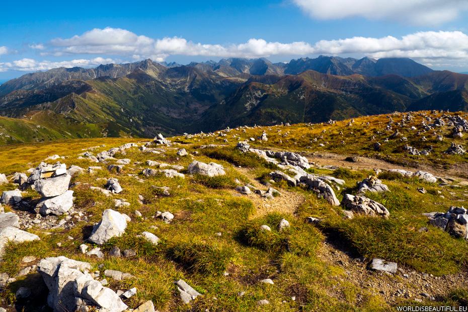 Peak in the Tatra Mountains - Krzesanica