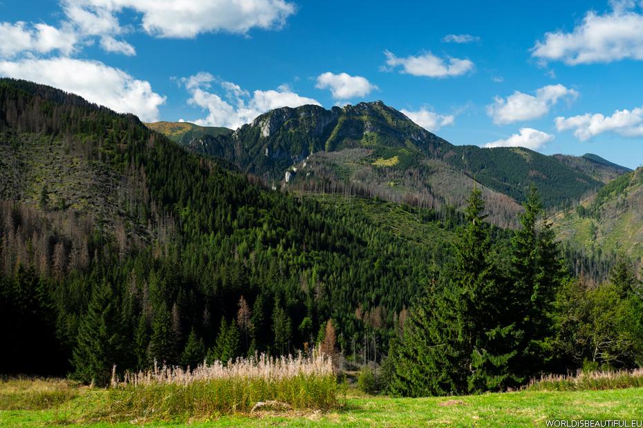 Tatry ze szlaku na Przysłop Miętusi