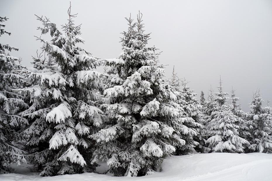 Zimowe widoki