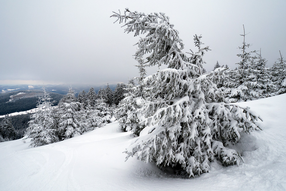 Winter in the Sudetes