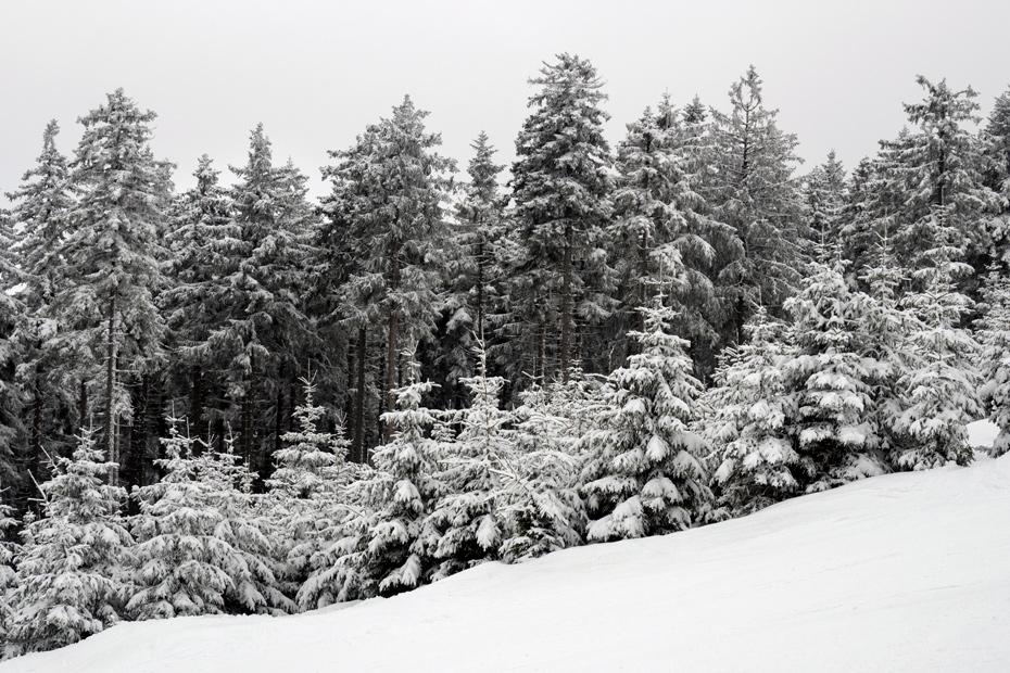 Ski slope Czarna Gora