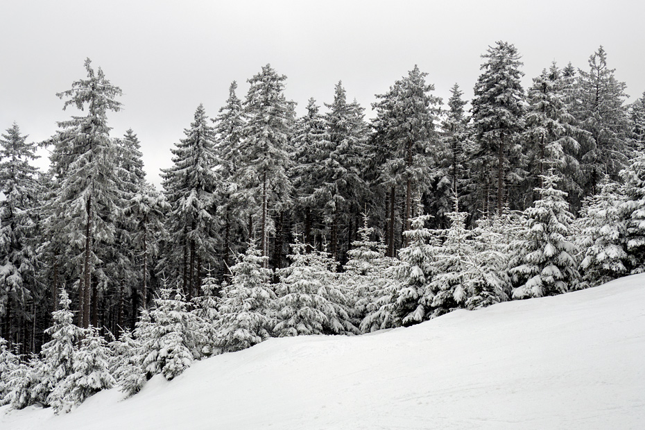 Czarna Gora ski trails
