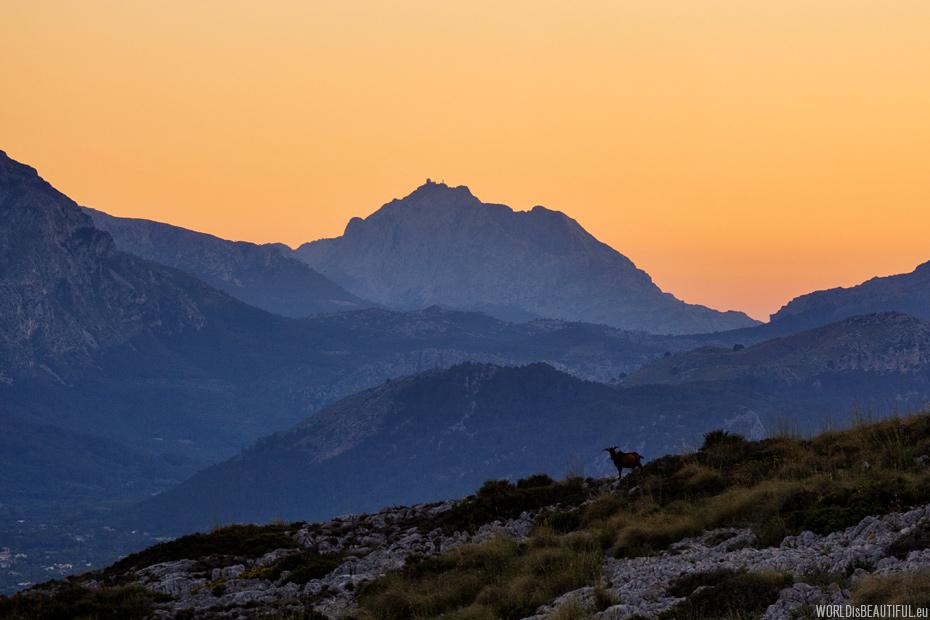 Puig Major - najwyższy szczyt Majorki