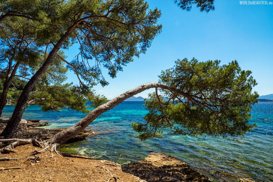 Wybrzeże półwyspu Formentor