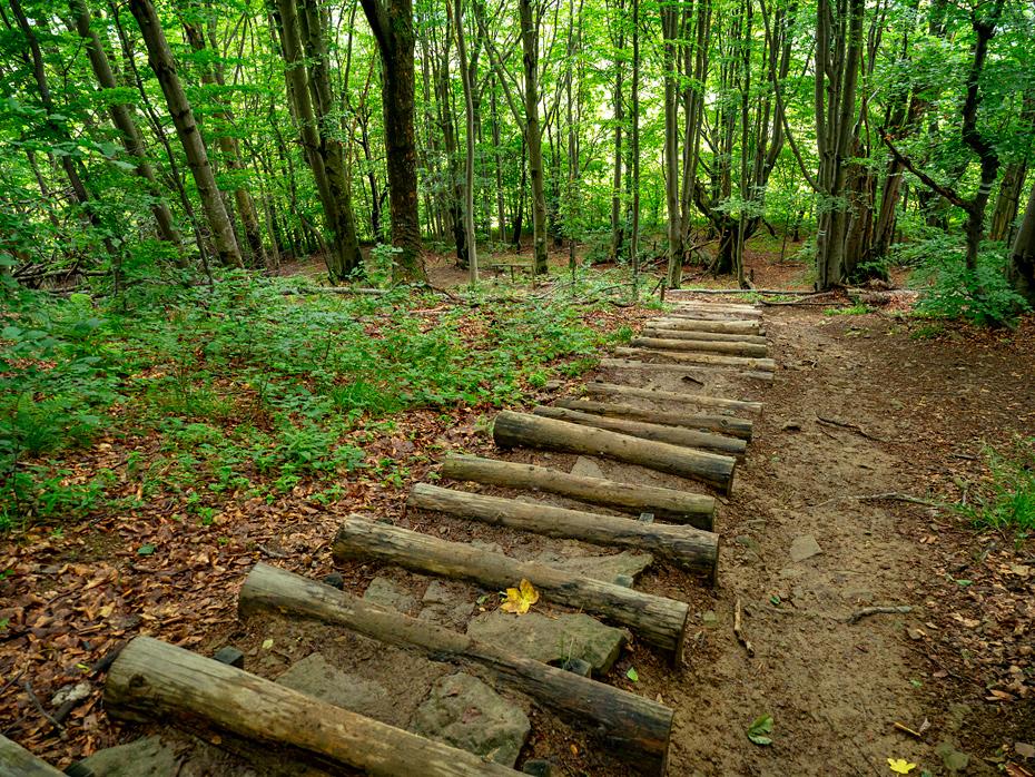 A green tourist route to Polinaina Carynska