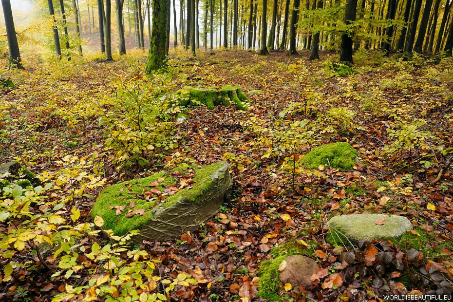Mounds (Kurgans) near Gdansk