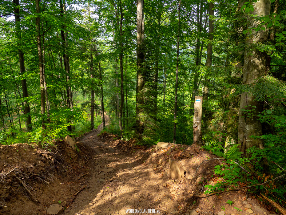 Bieszczady hiking trails