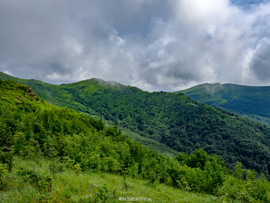 Mountains: Krzemien and Tarnica