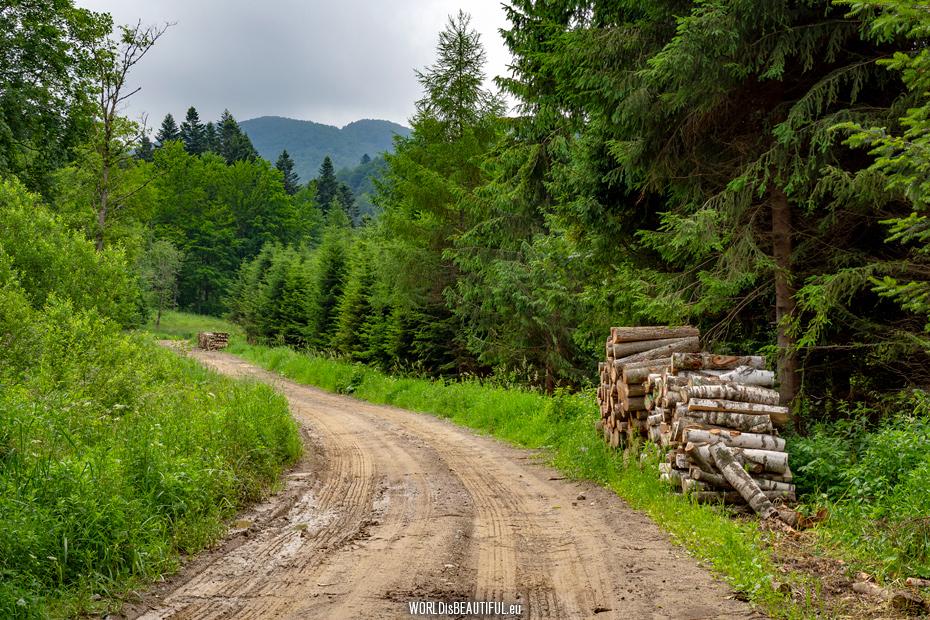 Trail to Bukowe Berdo